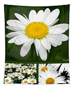 Daisy Collage Tapestry