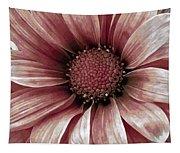Daisy Daisy Blush Pink Tapestry
