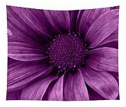 Daisy Daisy Grape Tapestry