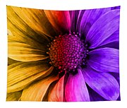 Daisy Daisy Yellow To Purple Tapestry