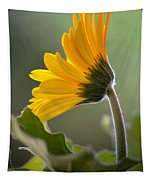 Daisy Derriere Tapestry
