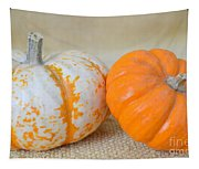Daisy Gourd And Pumpkin Tapestry