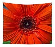 Daisy In Full Bloom Tapestry