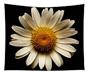 Daisy On Black Square Tapestry