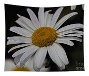 Daisy Tapestry