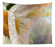 Daisy With Hubble Cosmos Tapestry