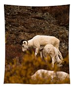 Dall Sheep Grazing Tapestry