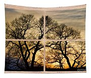 Dancing Forest Trees Picture Window Frame Photo Art View Tapestry