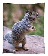 Dancing Squirrel Tapestry