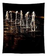 Dancing Waters Tapestry