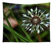 Dandelion Will Make You Wise Tapestry