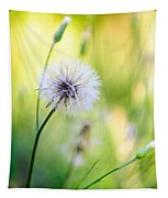 Dandelion Wishes Tapestry