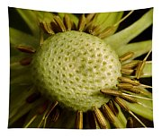 Dandelion With Seeds Tapestry