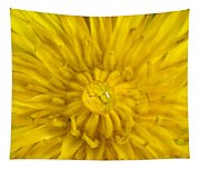 Dandelion With Waterdrop Tapestry