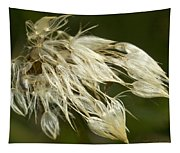 Dandelion's After Rain Tapestry