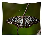 Dark Glassy Tiger Butterfly On Branch Tapestry