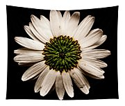 Dark Side Of A Daisy Square Tapestry