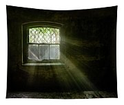 Darkness Revealed - Basement Room Of An Abandoned Asylum Tapestry