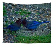 Darling I Have To Tell You A Secret-sweet Stellar Jay Couple Tapestry