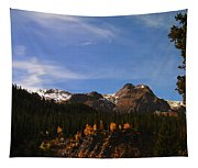 Day Dreaming In Colorado Tapestry