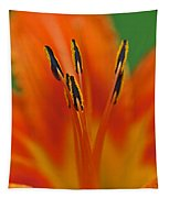 Day Lily Anther Tapestry