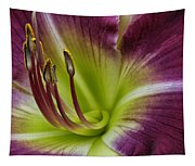 Day Lily Intimate Tapestry