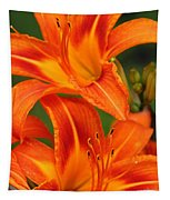 Daylily Duo  Tapestry