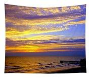 Daytona Beach Tapestry