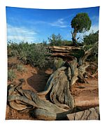 Dead Horse Point Tree 1 Tapestry