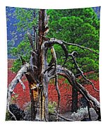 Dead Tree On Cinder At Sunset Crater Tapestry