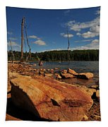 Dead Trees And Rocks Tapestry