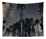 Deep Forest At Night Tapestry