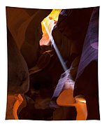 Deep In Antelope Tapestry
