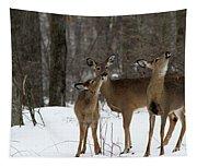 Deer Affection Tapestry