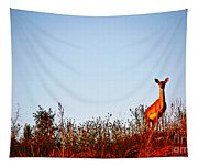 Deer At Sunset Tapestry