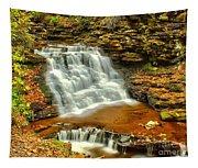 Delaware Falls - Ricketts Glen Tapestry
