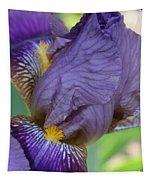 Demure Iris Tapestry