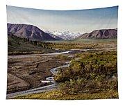 Denali Toklat River Tapestry