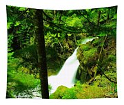 Denny Camp Falls  Tapestry