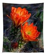 Desert Color Tapestry