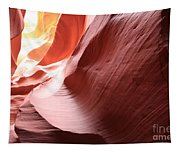 Desert Delight Tapestry