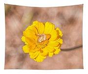 Desert-marigold Moth Tapestry