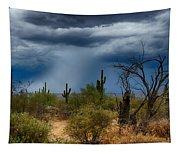 Desert Rains  Tapestry