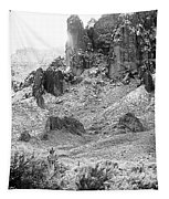 Desert Snowstorm Black And White Tapestry