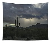 Desert Storm Beauty Tapestry