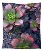 Desert Succulents Tapestry