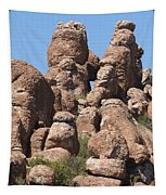 Devils Canyon Wall Tapestry