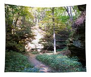 Devil's Punch Bowl Wildcat Den Tapestry