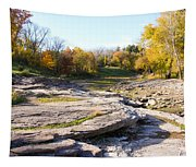 Devonian Fossil Gorge Coralville Lake Ia 3 Tapestry