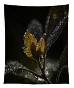 Dew Drops And Crystals Tapestry
